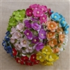 Mixed Color Sweetheart Blossom Flowers SAA-043