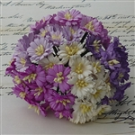 Mixed Purple/White Cosmos Daisy Stem Flowers SAA-149