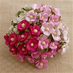 Mixed Pink and White Sweetheart Blossom Flowers SAA-331