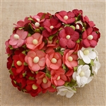 Mixed Red and White Sweetheart Blossom Flowers SAA-332