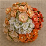 Mixed Peach/Orange and White Sweetheart Blossom Flowers SAA-334
