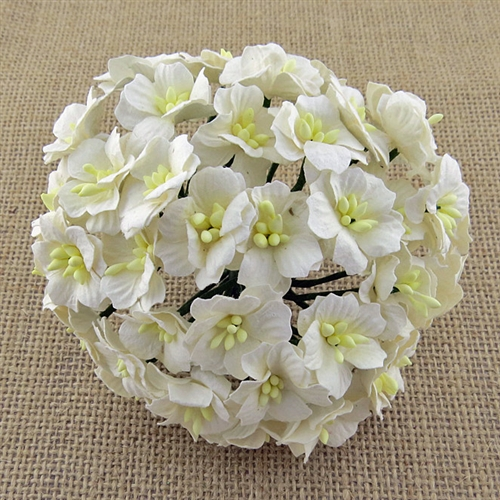 Wild Orchid Crafts 50 White Mulberry Paper Apple Blossoms Saa 360