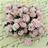 2-Tone Baby Pink Mulberry Paper Aster Daisy Stem Flowers SAA-380
