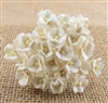 Miniature White Sweetheart Blossom Flowers SAA-439
